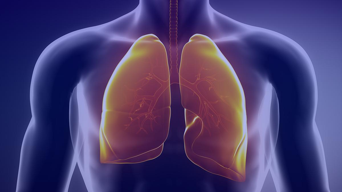 Respiratory Regeneration